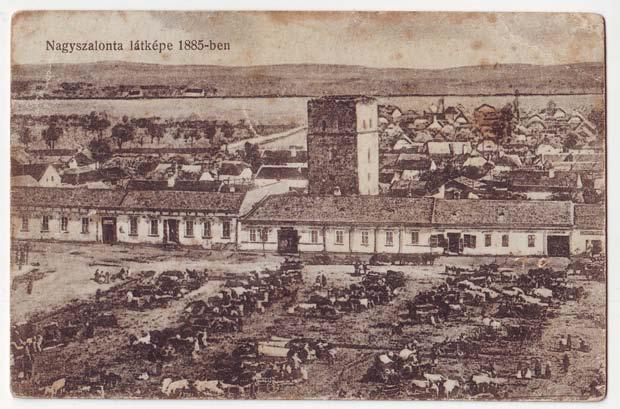 Nagyszalonta látképe 1885-ben